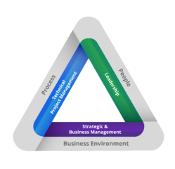 Talent Triangle for blog-1